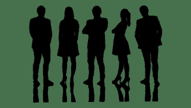 Meet The Team Image