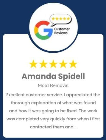 Amanda Spidell Mold Removal Review