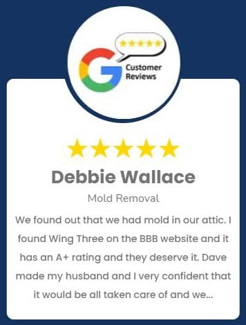 Debbie Wallace Mold Removal Review