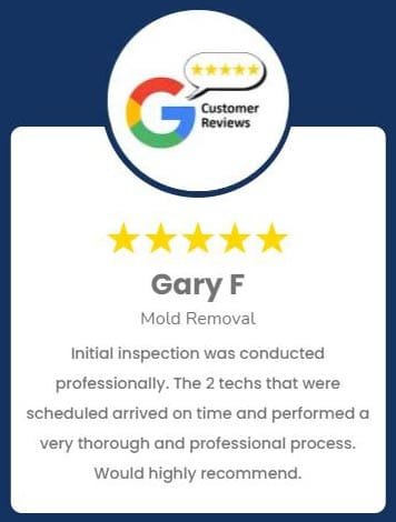Gary F Mold Removal Review