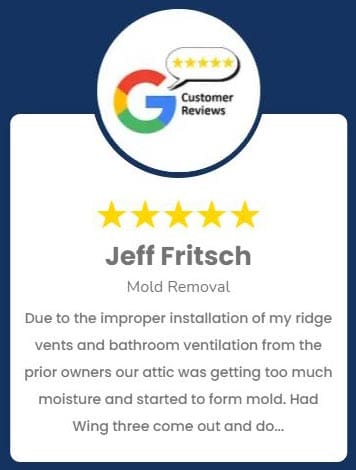 Jeff Fritsch Mold Removal Review
