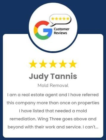 Judy Tannis Mold Removal Review