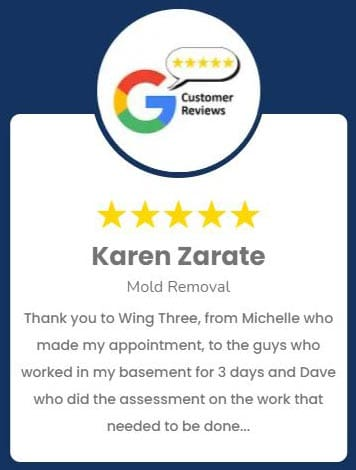 Karen Zarate Mold Removal Review