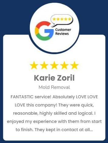 Karie Zoril Mold Removal Review