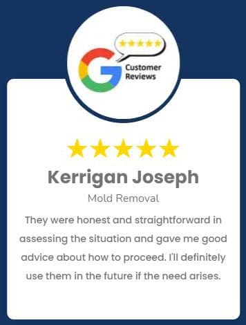 Kerrigan Joseph Mold Removal Review