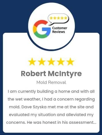 Robert McIntyre Mold Removal Review
